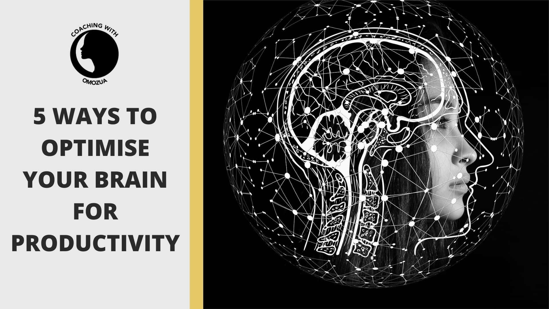 5 ways to optimise your brain for productivity