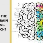 What is the whole brain thinking approach